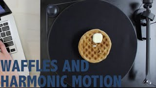 Waffles And Harmonic Motion [part 1]