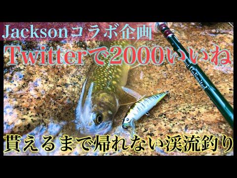【指令】Twitterで2000いいね貰うまで終われない渓流釣り(前編)