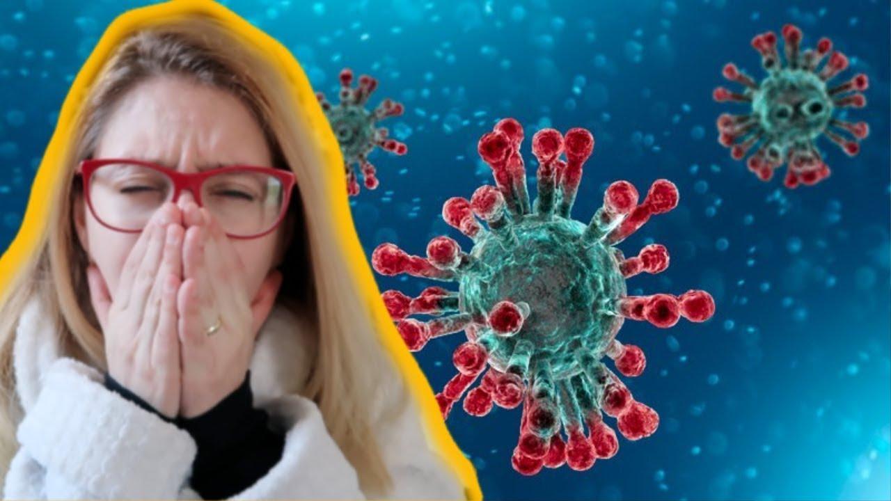Jó vírus a férgek ellen, Védekezés az internetes károkozók ellen (Vírus, féreg, worm, SPAM)