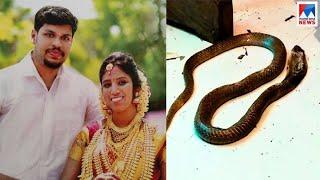 ഉത്ര കേസിൽ വഴിത്തിരിവായത് ഈ നിർണായക സംശയം |  Kollam | Anchal | Murder