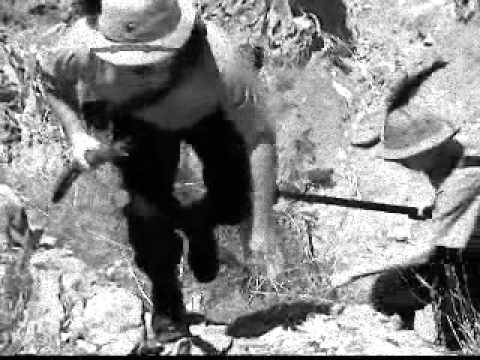 The Battle of Black Lizard Canyon