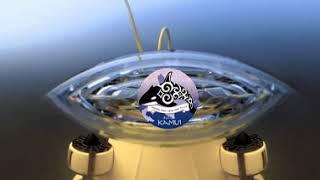 北海道海底熟成プロジェクト in 木古内 6ヶ月調査 360度 insta360 ONE X Aqua Vision Part 2