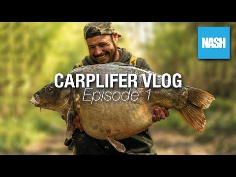 Carp Fishing in