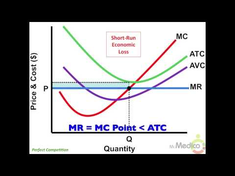 Perfect Competition - What You Must Know in 4 Minutes - Microeconomics