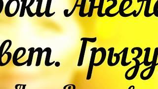 200. УРОКИ АНГЕЛОВ. ответ. Грызуны/Лена Воронова