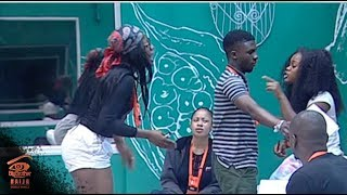 Download Video Big Brother Double Wahala Day 38: What Price for Peace? MP3 3GP MP4