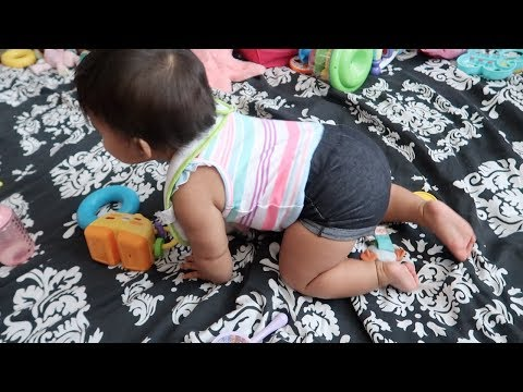 Vlog: *July 18, 2017* ~We Finally Have a Crawler!~
