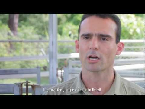 Daniel - Brazil, PhD Veterinary Science