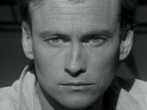 Mr. Mister - Broken Wings (Official Video)