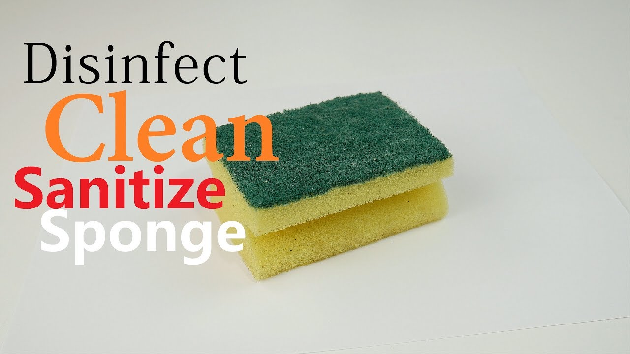 how to sanitize clean disinfect kitchen sponge easy simple