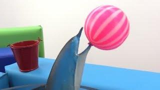 Видео для девочек - Барби дрессирует дельфина! Видео для детей