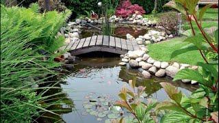 Как сделать водоем - пруд на участке, даче