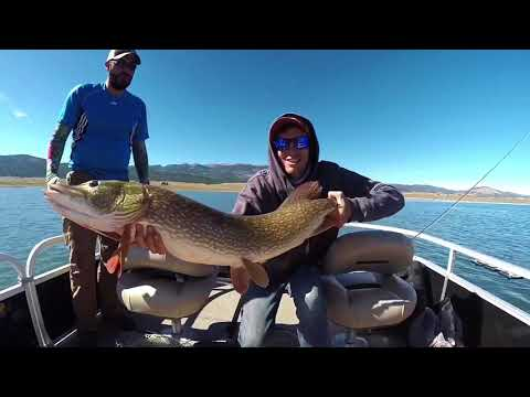 Fishing For HUGE PIKE