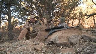 Huge mountain lion taken without dogs on elk kill