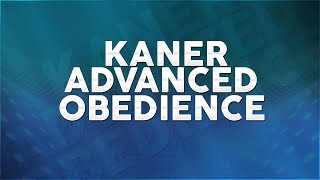 Service Dog Training - The K9 Training Academy - Kaner - Advance Obedience