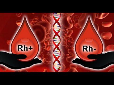 Rh Negative Bloodlines in History - ROBERT SEPEHR Hqdefault