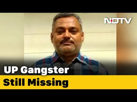 Download Kanpur Encounter: UP Police Officer Killed By Gangster Had Named Cops In Letter