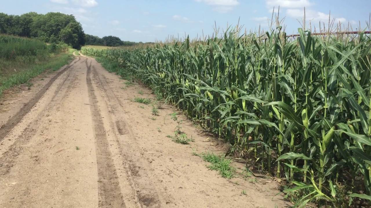 center pivot irrigation on the kansas-nebraska border