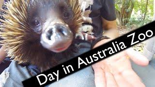 Australia Zoo 27.3.2017 - Crikey!
