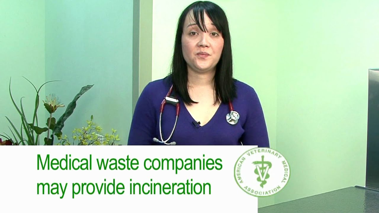 The AVMA's tips on how to dispose of pharmaceutical waste