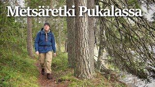 Metsäretki ja kokkailua | Pukalan retkeilyalue