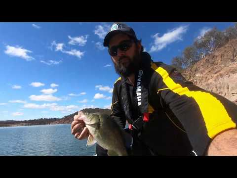 Burrinjuck Dam Fishing, Casting Edges August 2019