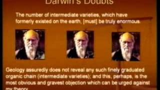 Creation, Evolution and Intelligent Design part2\4
