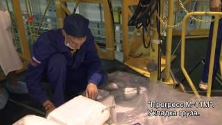 ГКК Прогресс М-11М. Укладка грузов.