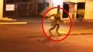 5 Mythical Creatures Caught On Camera & Spotted In Real Life!