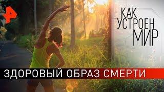 """Здоровый образ смерти. """"Как устроен мир"""" с Тимофеем Баженовым (08.10.19)."""