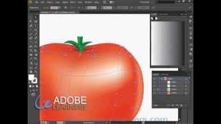 How to use mesh tool in Adobe Illustrator : Draw a Tomato