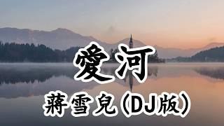 愛河 - 蔣雪兒(DJ版) - 難道這就是妳分手的借口如果讓妳重新來過 妳會不會愛我【2019抖音熱門歌曲】