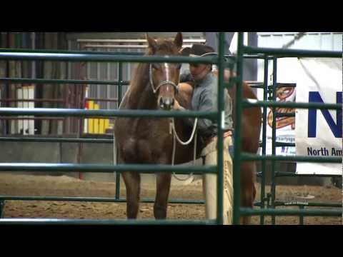 Max Magazine - 2013 Sask Equine Expo - Trainer Challenge on