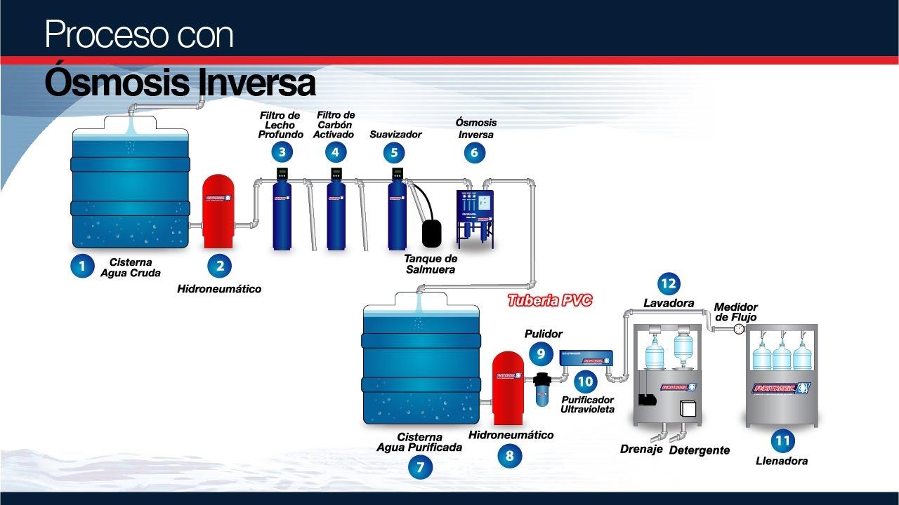 Proceso de purificaci n plantas purificadoras de agua for Plantas de purificacion