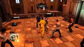 Sleeping Dogs - Bruce Lee tribute