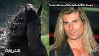 هل هذا هو الحصان الأكثر وسامة في العالم؟