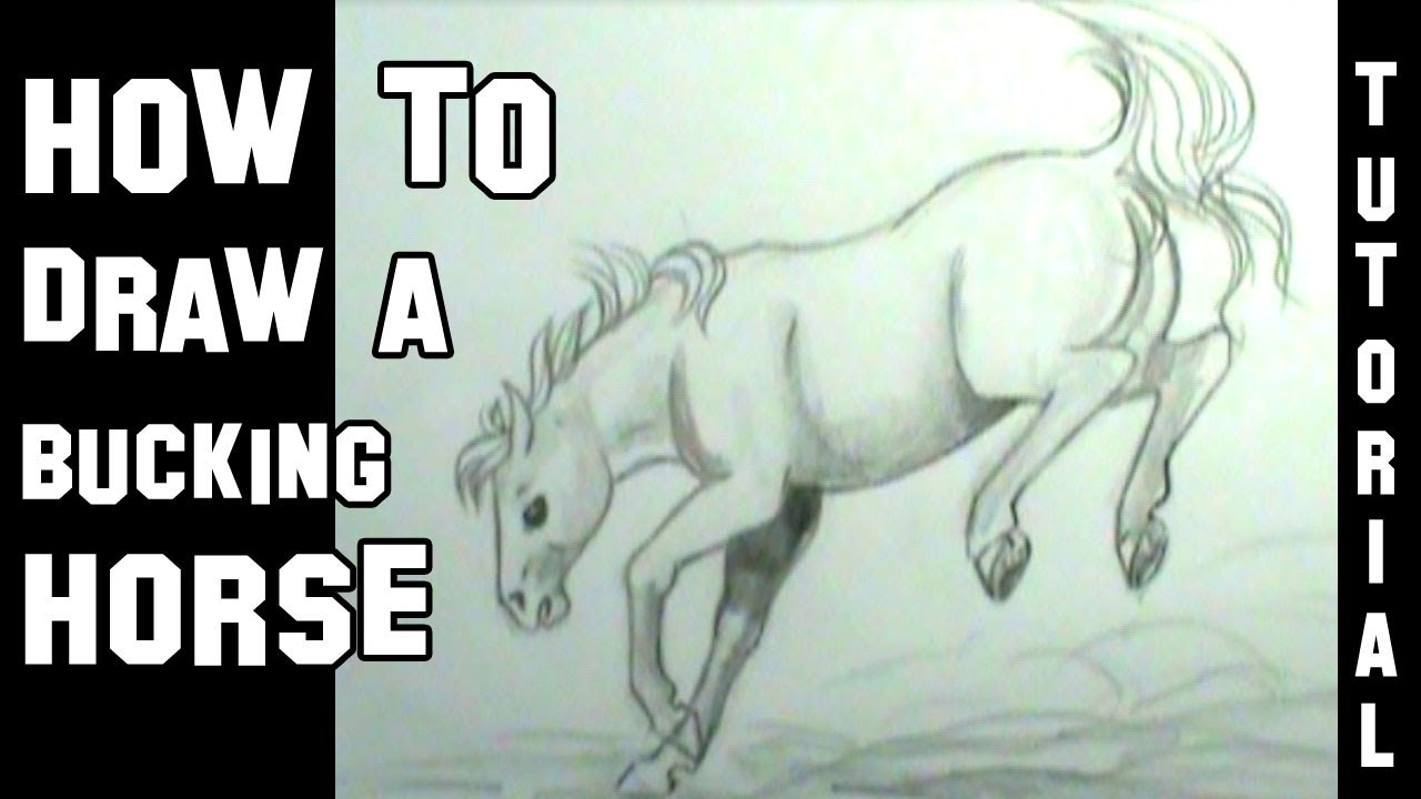 how to draw a horse bucking