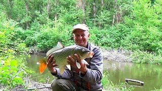 Супер рыбалка на сазана. Река Уды.