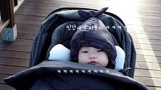 베이비머핀 아기띠워머와 함께한 가을산책(육아템 추천)