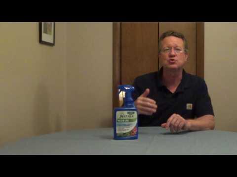 Neem Oil - Organic Pest Control - Fungicide - 동영상