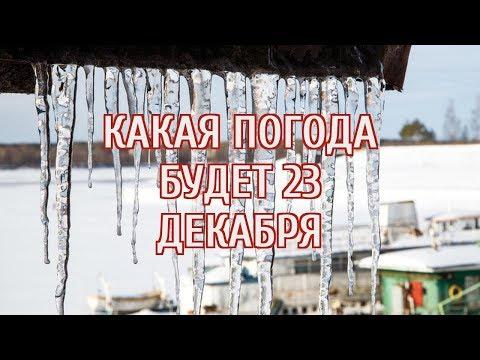 🔴 Россиян предупредили о температурных аномалиях в ближайшие дни