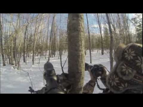 gopro wild boar hunting, chasse au sanglier, quebec canada Ranch d