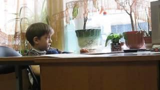 Ребенок 6 лет, после первого года обучения