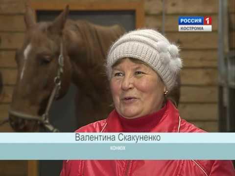 Знакомства в Мурманске без регистрации и бесплатно – сайт