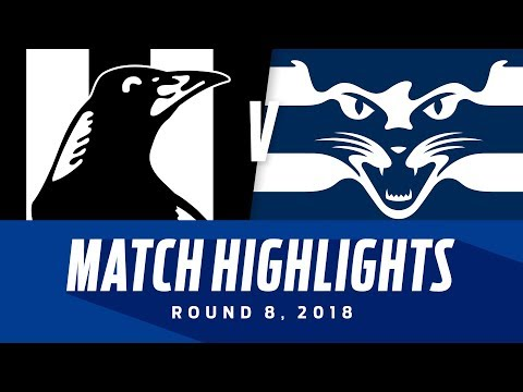Match Highlights: Collingwood V Geelong | Round 8, 2018 | AFL