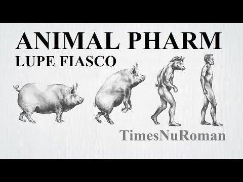 Lupe Fiasco - Animal Pharm (Lyrical Breakdown)