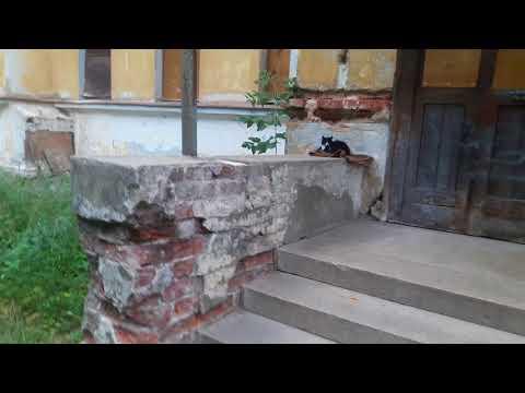 Усадьба Севрюгина, г.Кинешма, лето 2018 года