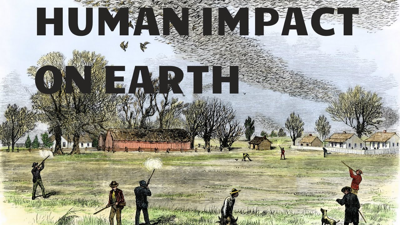a study on the human impact on the permanent destruction of earth Population controls 'will not solve study said roughly 14% of all the people who ever existed were alive today these growing numbers mean a greater impact.