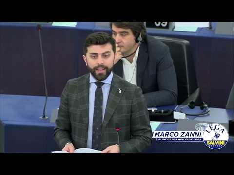 Marco Zanni - Basta Soldi A Bruxelles - Intervento Plenaria 12/02/2020