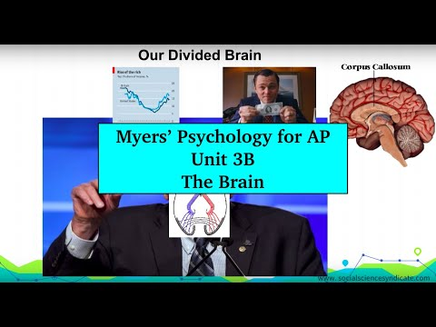 Unit 3B Myers' Psychology for AP